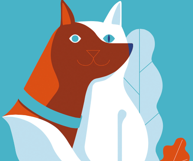 Asisa se diversifica y crea Asisa Mascotas